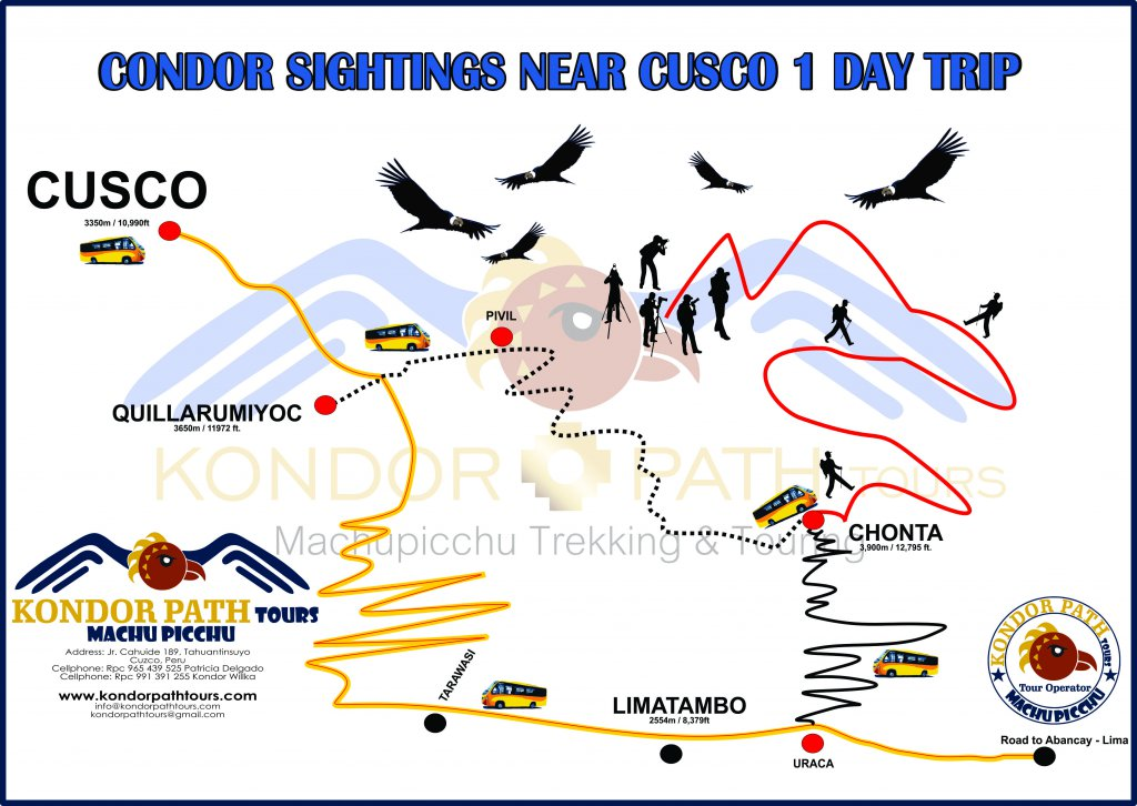 condor sightings near cusco 1 day trip map